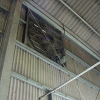 大型換気扇で工場内の空調にも気をつけています