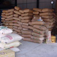 肥料や生産資材は証明書(トレーサビリティー)をつけてもらっています