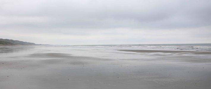 自然の浜辺でデトックス