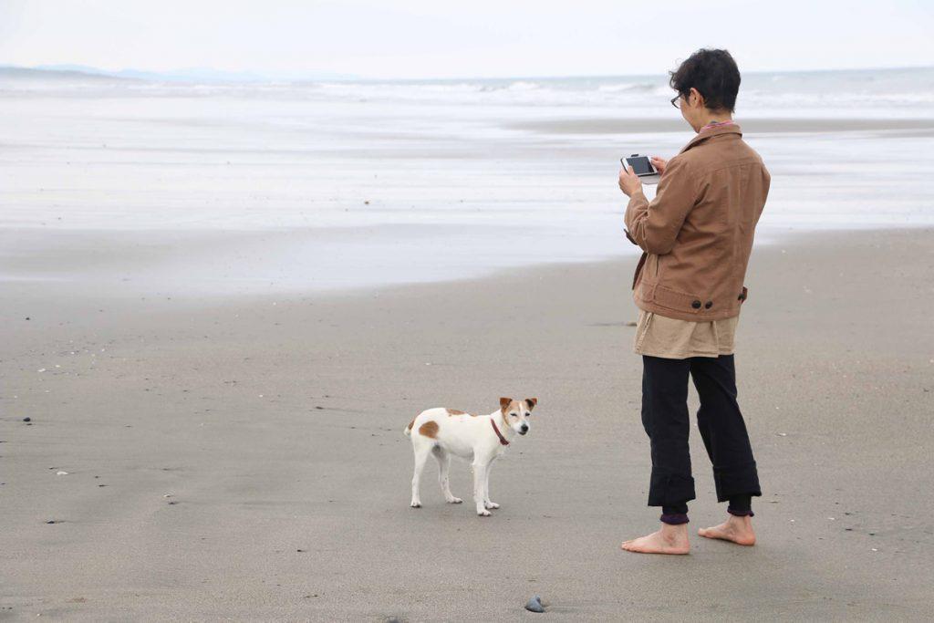 砂浜をはなちゃんと散歩